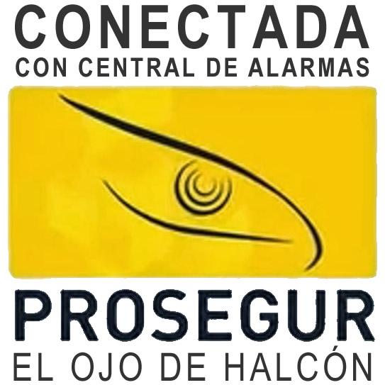 ojo_de_halcon
